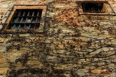 监狱门面 库存照片