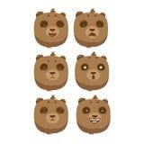 盒棕熊表情 库存照片