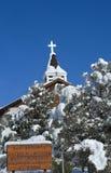 盖在新鲜的雪 免版税图库摄影