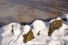 盖在霜疯狂的湖和雪- Bassin de la muette在法国 库存照片