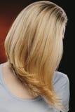 盖她的面孔的妇女用她的金发 库存照片