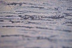 盖子冻结的模式向量冬天 空白的雪花 灰色颜色 Boke 免版税库存图片