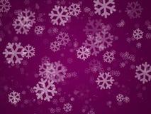 盖子节假日紫色 图库摄影