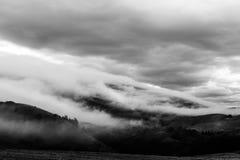 盖有些山和树的雾 库存照片