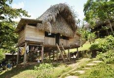 盖的小屋- Embera印地安人村庄的当地印地安家 库存图片