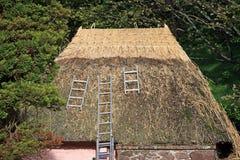 盖的屋顶 免版税库存图片