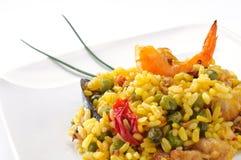 盘典型肉菜饭的西班牙语 图库摄影