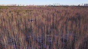 盘旋在森林和街区上的天空的寄生虫直升机的天线在背景 ?? 小quadrocopter 股票视频