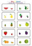 盘旋小果实,发现大或小活页练习题孩子的,在对面 工作表 免版税库存照片