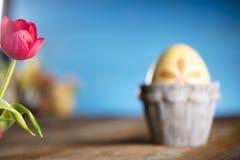 盘旋您色的复活节彩蛋eps10空间文本主题的向量 库存照片