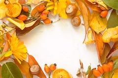 盘旋框架与在白色背景的秋叶 秋天 免版税图库摄影
