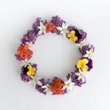 盘旋紫色花框架、花圈在白色背景的,贺卡、装饰明信片或者邀请 库存照片