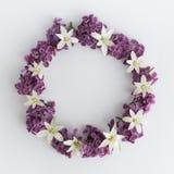 盘旋紫色花框架、花圈在白色背景的,贺卡、装饰明信片或者邀请 库存图片