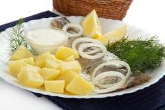 盘用鲱鱼和土豆 免版税库存图片