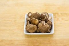 盘采蘑菇shitake白色 免版税库存照片