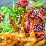盘-与菜的龙虾 库存照片