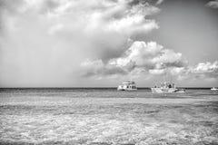 盛大土耳其人,特克斯和凯科斯群岛- 2015年12月29日:快速汽艇在多云天空的绿松石海 在田园诗的小船 免版税库存图片