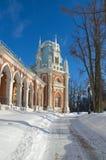 盛大宫殿在Tsaritsyno,莫斯科,俄罗斯 库存图片