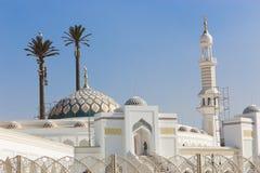 盛大清真寺尖塔和圆顶  免版税图库摄影