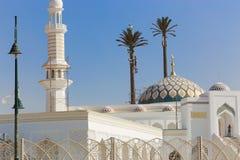 盛大清真寺尖塔和圆顶  库存图片