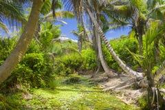 盛大Anse海滩,塞舌尔群岛 图库摄影