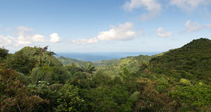 盛大Etang国家公园-森林和加勒比海 免版税图库摄影