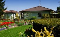 盛开的庭院 免版税图库摄影