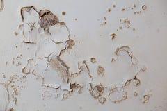 盛开的膏药 老墙壁损坏的涂灰泥需要建造者关于 免版税库存照片