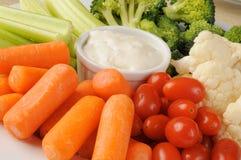 盛肉盘蔬菜 免版税图库摄影
