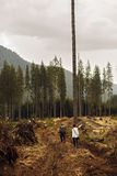 目击森林的一个使荒凉的风景妇女游人是 图库摄影