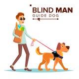 盲人传染媒介 有爱犬伴侣的人 墨镜和领路狗走的盲人 动画片 向量例证