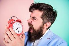 直到最后期限的多少时刻 时刻工作 人有胡子的积极的商人举行时钟 重点概念 行家 免版税库存图片