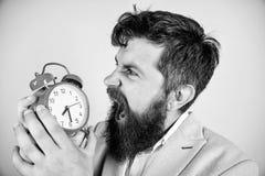 直到最后期限的多少时刻 时刻工作 人有胡子的积极的商人举行时钟 重点概念 行家 库存照片
