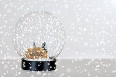 相信圣诞节地球雪 库存图片