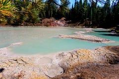 相当亚硫的泥罐和干泥储蓄iamid林木在拉森火山国家公园 库存图片