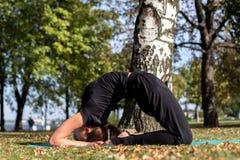 相当亭亭玉立的女孩在公园做瑜伽 结冰在一个被倒置的位置 免版税图库摄影