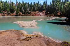相当在林木中的亚硫的泥罐在拉森火山国家公园 免版税库存图片