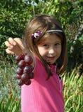 相当小女孩在葡萄园里在秋天用葡萄 免版税库存图片