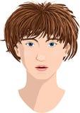 相当少妇面孔,传染媒介例证 白色皮肤,蓝眼睛,头发的broun 皇族释放例证