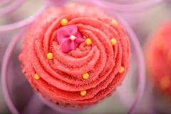 相当桃红色宝莱坞杯形蛋糕 库存图片