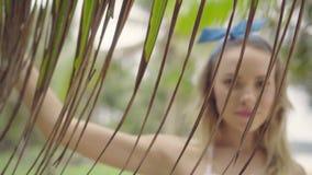 相当自然看妇女在棕榈树之间的一个美好的夏日 股票录像