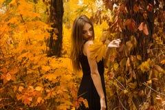 相当黑礼服的女孩与在金黄秋天森林里做摆在 库存图片