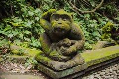 相当滑稽的猴子 免版税图库摄影