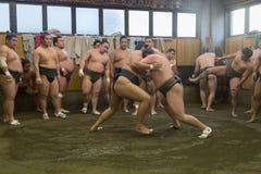相扑训练在东京,日本 免版税图库摄影