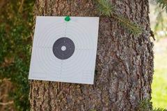 盾猎枪附有树 免版税库存图片