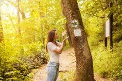 看一个标志的迷茫的少妇在森林里 库存照片