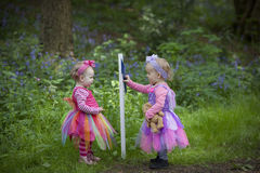 看一个路标的两个孩子在森林里 库存照片
