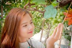 看一束绿色葡萄的女孩在一明亮的天 免版税库存照片