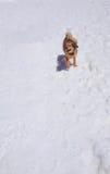看一条逗人喜爱的棕色的狗等待它的所有者对山走的足迹 免版税库存图片