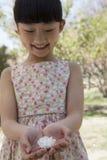 看下来在她的一朵樱花的小微笑的女孩在一个公园托起了手春天 免版税库存照片